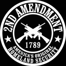 Guns & Ammo 011 2nd Amendment