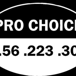 Guns & Ammo 013 Pro choice