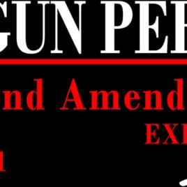 Guns & Ammo 024 My gun permit