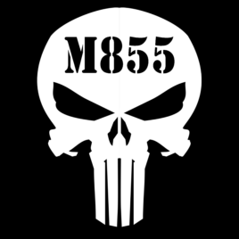 Guns & Ammo 031 Ammo can skull M855