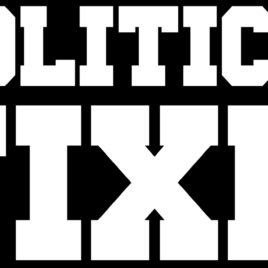 Funny 040 Politician Fixer