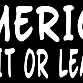 Patriotic 03 America Love It Or Leave It