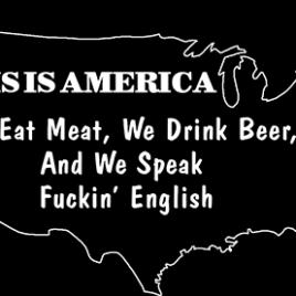 Patriotic 14 This Is America