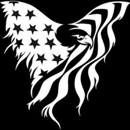 Patriotic 15 Eagle Flag