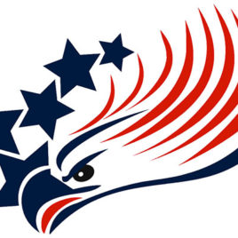 Patriotic 19 American Eagle and Stars